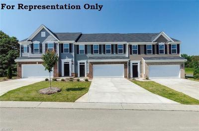 Medina County Single Family Home For Sale: 3176 Broadleaf Way