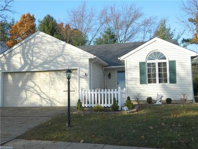 Strongsville Single Family Home For Sale: 16560 Lake Circle Dr