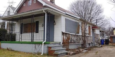 Cleveland Single Family Home For Sale: 7806 Vineyard Ave