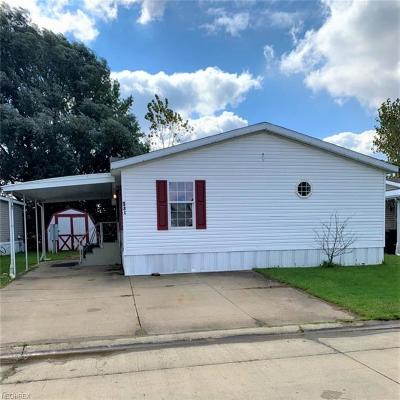 Elyria Single Family Home For Sale: 135 South Carolina Ave