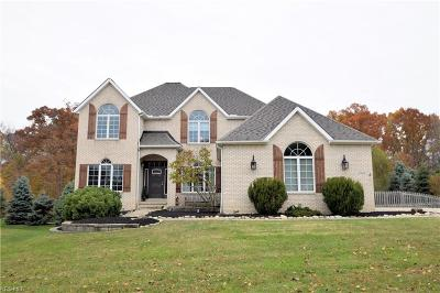 North Royalton Single Family Home For Sale: 9382 Chesapeake Dr
