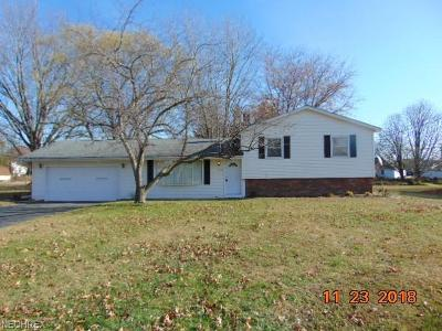 Painesville Single Family Home For Sale: 220 Mill Morr Dr