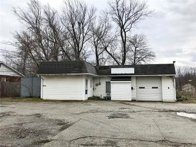 Ashtabula Commercial For Sale: 914 East 6th St