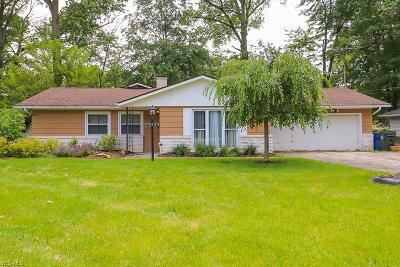 North Olmsted Single Family Home For Sale: 28643 Spruce Dr