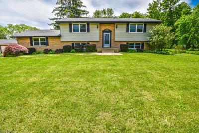 Medina Single Family Home For Sale: 156 Bath Rd