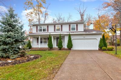 Mentor Single Family Home For Sale: 7151 Green Valley Dr