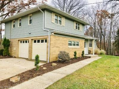 Strongsville OH Single Family Home For Sale: $256,000