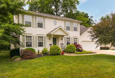 Amherst OH Single Family Home For Sale: $244,900