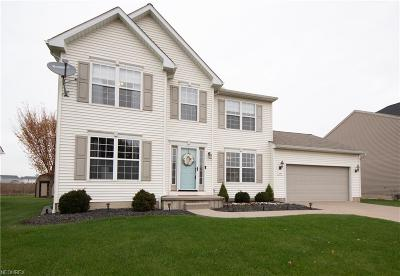 Lorain County Single Family Home For Sale: 3940 Martins Run Dr