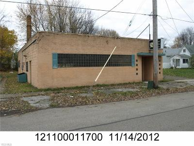 Conneaut Commercial For Sale: 357 Depot Street