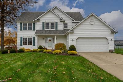 Mentor Single Family Home For Sale: 6847 Chablis Ct