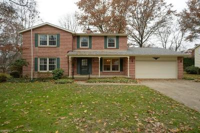 Wadsworth Single Family Home For Sale: 370 Dohner Dr
