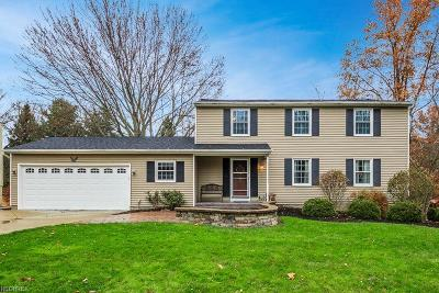 Brecksville, Broadview Heights Single Family Home For Sale: 11975 Snowville Rd