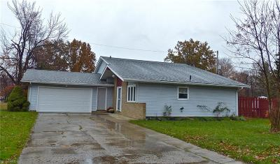 Mentor Single Family Home For Sale: 7365 Ohio St