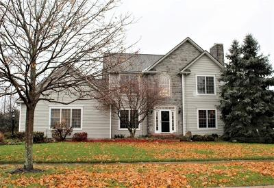 Summit County Single Family Home For Sale: 282 Cheshire Rd