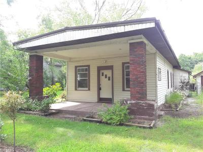 Geneva Single Family Home For Sale: 1068 W Main Court