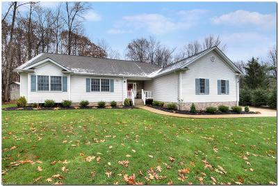Geauga County Single Family Home For Sale: 17353 Messenger Rd