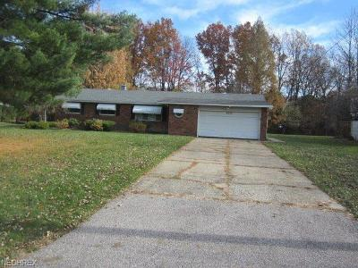 Mentor Single Family Home For Sale: 6233 Bryson Dr
