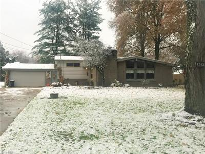 Youngstown Single Family Home For Sale: 6993 Ronjoy Pl