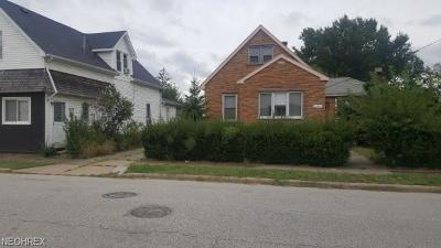 Cleveland Single Family Home For Sale: 20357 Goller Ave