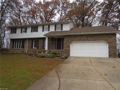 Youngstown Single Family Home For Sale: 2014 Chestnut Hill Dr