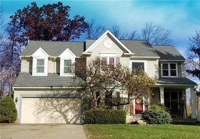 Twinsburg Single Family Home For Sale: 2849 Sikes Ln