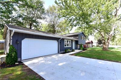 Sheffield Lake OH Single Family Home For Sale: $175,000