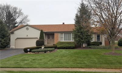 Youngstown Single Family Home For Sale: 172 Sugarcane Dr