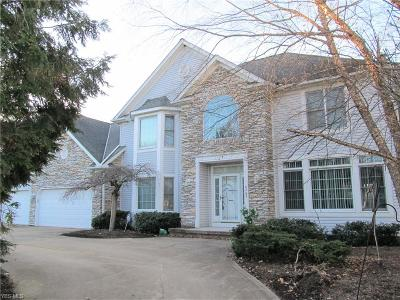 Solon Single Family Home For Sale: 6760 Ridgecliff Drive