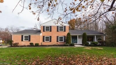 Summit County Single Family Home For Sale: 867 North Portage Path