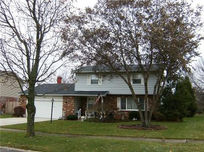 Elyria Single Family Home For Sale: 372 Crestview Dr