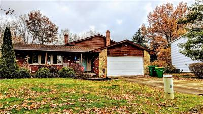 Mentor Single Family Home For Sale: 8752 Pinewood Ct