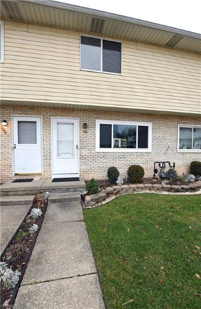 Painesville Condo/Townhouse For Sale: 284 Ivy Ln