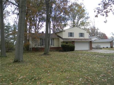 Avon Lake Single Family Home For Sale: 33074 Electric Blvd