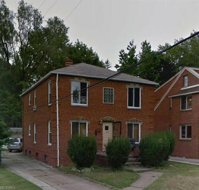 Cleveland OH Multi Family Home For Sale: $163,900