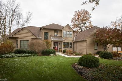 Avon Lake Single Family Home For Sale: 464 Long Pointe Dr