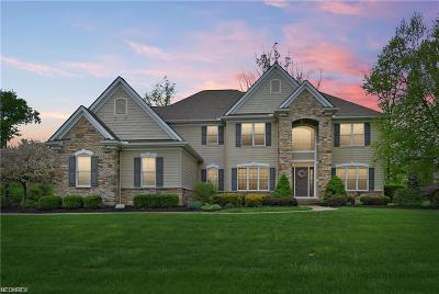 Brecksville Single Family Home For Sale: 4802 Snow Blossom