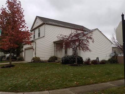 Brunswick Single Family Home For Sale: 1163 Molland Dr