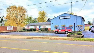 Stark County Commercial For Sale: 1806 Navarre Rd Southwest