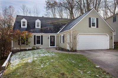 Chagrin Falls Single Family Home For Sale: 138 Elm Ct