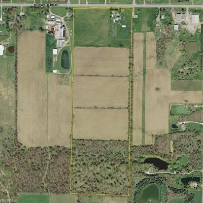 Litchfield Residential Lots & Land For Sale: 8060 Norwalk Rd