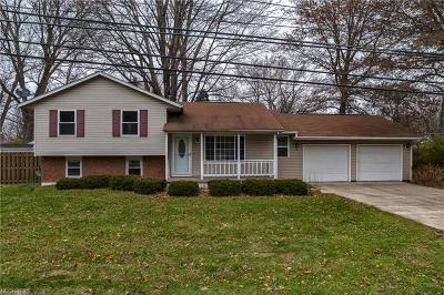 Madison Single Family Home For Sale: 5997 Chapel Rd