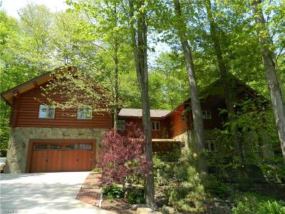 Geauga County Single Family Home For Sale: 10506 Mayfield Rd