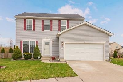 North Ridgeville Single Family Home For Sale: 8291 Chesapeake Dr