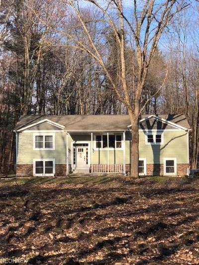 Geauga County Single Family Home For Sale: 10870 Stafford Rd