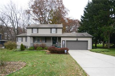 Youngstown Single Family Home For Sale: 8029 Paulin Dr