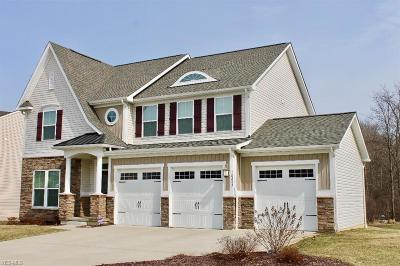 Twinsburg Single Family Home For Sale: 10253 Flagstone Dr
