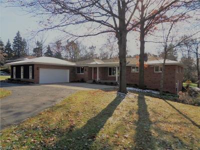 Sagamore Hills Single Family Home For Sale: 500 Sagamore Rd