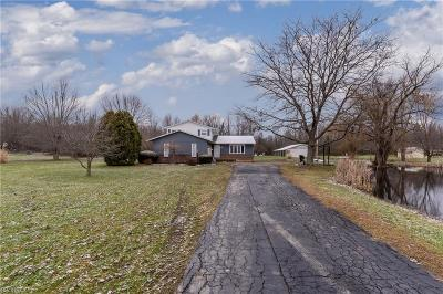 Lorain County Single Family Home For Sale: 40748 Whitney Rd