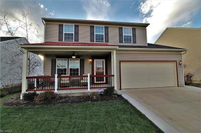 Medina County Single Family Home For Sale: 234 Chester Ave